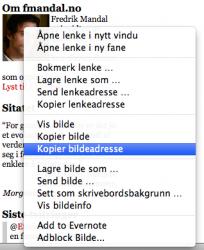 Høyreklikk på bildet og velg «Kopier bildeadresse». (Foto: Skjermbilde)